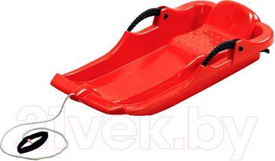 Санки детские AlpenGaudi Spider 991202 (красный)