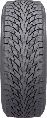 Зимняя шина Nokian Hakkapeliitta R2 245/45R17 99R