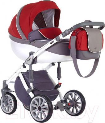 Детская универсальная коляска Anex Sport 2 в 1 (PA10)