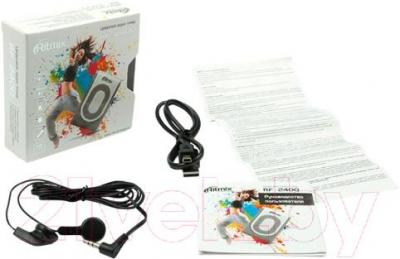 MP3-плеер Ritmix RF-2400 (4Gb, бело-серый) - комплектация