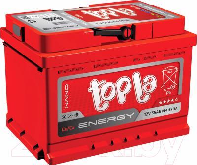 Автомобильный аккумулятор Topla Energy 108066 (66 А/ч)