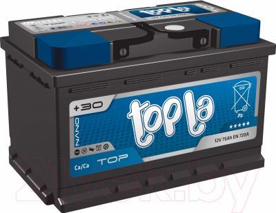 Автомобильный аккумулятор Topla Top 118655 (55 А/ч)