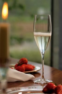 Набор бокалов для шампанского Riedel Grape Champaghe Glass (2 шт)