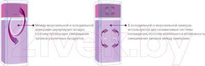 Холодильник с морозильником Beko RCNK355K00S - двухконтурная система охлаждения