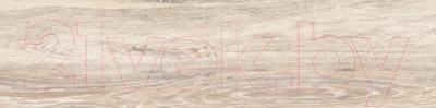 Плитка Estima BG00 (15x60)