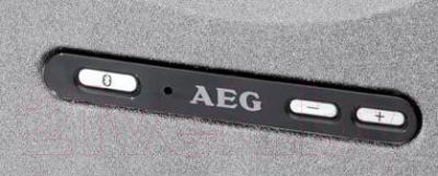 Портативная колонка AEG BSS 4801 (черно-серый)