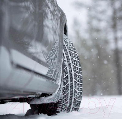 Зимняя шина Toyo Snowprox S943 205/55R16 91T