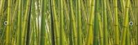 Экран для ванны МетаКам Ультра легкий Арт 1.68 (бамбук) -