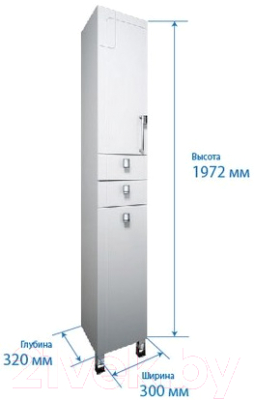 Шкаф-пенал для ванной Triton Диана 30 с корзиной (002.11.0300.201.02.01 L)