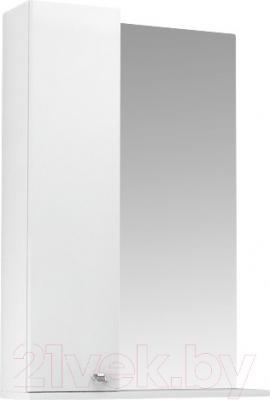 Шкаф с зеркалом для ванной Triton Локо 55 (013.42.0550.101.01.01.L)