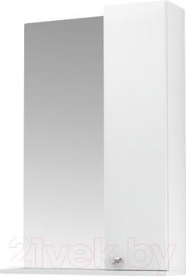 Шкаф с зеркалом для ванной Triton Локо 55 (013.42.0550.101.01.01.R)