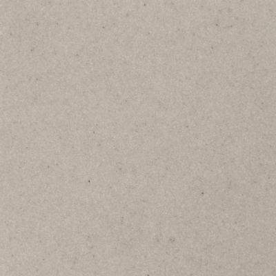 Мойка кухонная Aquasanita CLARUS SR101 (силика) - вполоборота