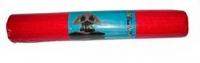 Коврик для йоги NoBrand L173 (красный) -