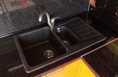 Мойка кухонная Polygran F-18 (черный)