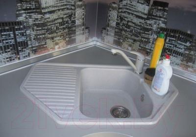 Мойка кухонная Polygran F-10 (белый)