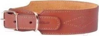 Ошейник Collar 0236 (коричневый)