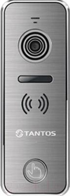 Вызывная панель Tantos iPanel 1 (металлик/камера 800)