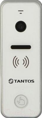 Вызывная панель Tantos iPanel 2 (белый, камера 800)