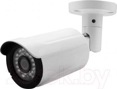 IP-камера VC-Technology VC-IP8S130AP/60