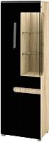 Шкаф Мебель-Неман Леонардо МН-026-01/1 (черный полуглянец/дуб Сонома) -