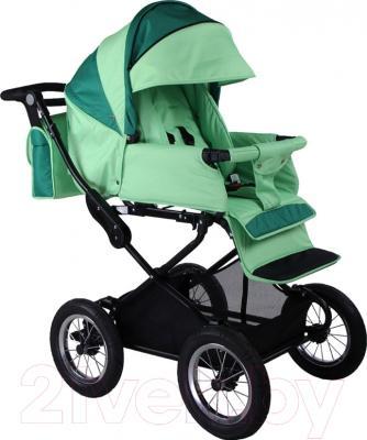 Детская универсальная коляска Babyhit Evenly 2 в 1 (зеленый)