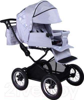 Детская универсальная коляска Babyhit Evenly 2 в 1 (серый)