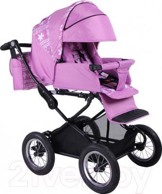 Детская универсальная коляска Babyhit Evenly 2 в 1 (фиолетовый)