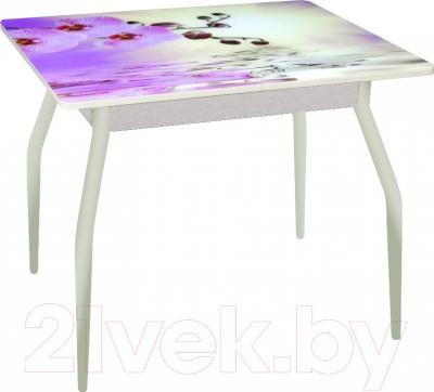 Обеденный стол Древпром Алиот 90x60 (металл/орхидея на воде/металл)
