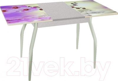 Обеденный стол Древпром Алиот 90x60 (металл/орхидея на воде/металл) - в разложенном виде