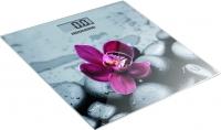 Напольные весы электронные Redmond RS-733 (орхидея) -