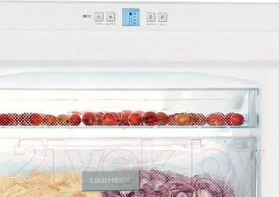 Морозильник Liebherr G 4013 Comfort