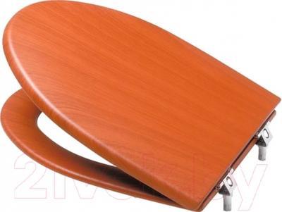 Сиденье для унитаза Roca America A801492M14 (вишневый)