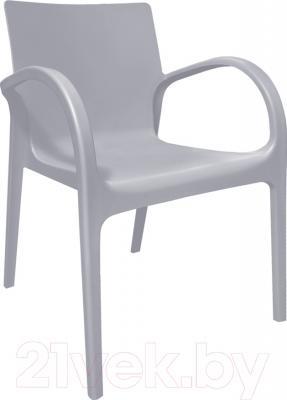 Стул пластиковый Алеана Гектор (серый)