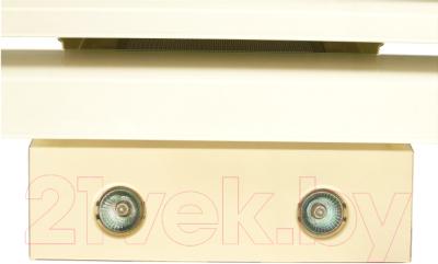 Вытяжка декоративная Zorg Technology Сатурн (Troy) 1000 (90, бежевый)