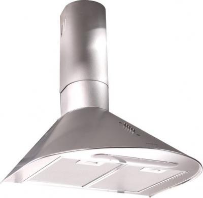 Вытяжка купольная Zorg Technology RM (Eco) 650 (50, Matt Stainless Steel) - общий вид