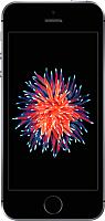 Смартфон Apple iPhone SE 16GB (серый космос) -