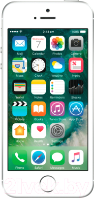 Смартфон Apple iPhone SE 16GB (серебристый)