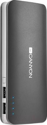 Портативное зарядное устройство Canyon CNE-CPB130DG