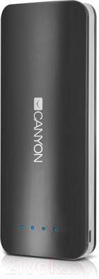 Портативное зарядное устройство Canyon CNE-CPB156DG