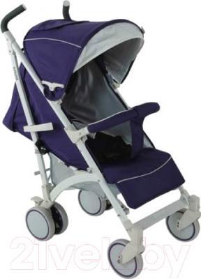 Детская прогулочная коляска Babyhit Rainbow (Blue-White)