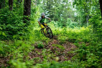 Велосипед Format 1312 2016 (S, желтый матовый)