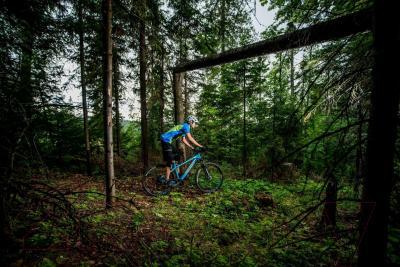 Велосипед Format 1314 (S, синий матовый)