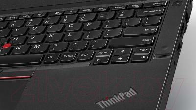 Ноутбук Lenovo ThinkPad X260 (20F5S1MG00)