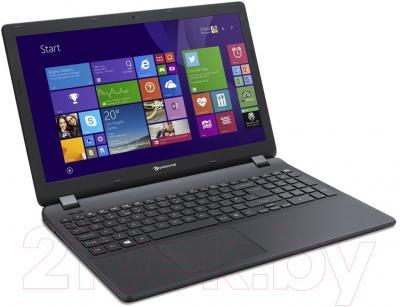 Ноутбук Packard Bell EasyNote TG81BA-P1M7 (NX.C3YER.010)