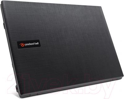 Ноутбук Packard Bell EasyNote TE69BH-3342 (NX.C48ER.009)