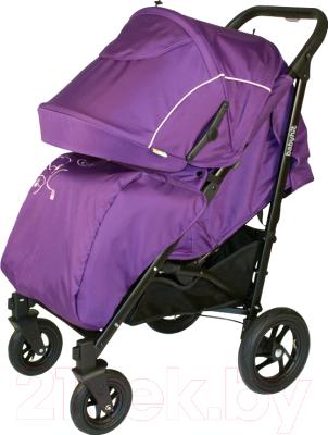 Детская прогулочная коляска Babyhit Drive (Violet)