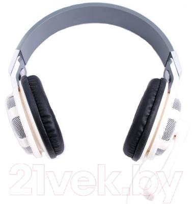 Наушники-гарнитура DigiOn PTSLR320MVWS