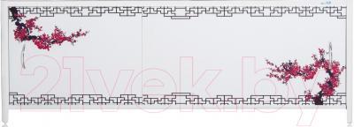 Экран для ванны ВаннБок Класс 168x70 (0190164010168)