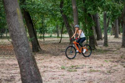 Велосипед Format 7742 (S, оранжевый)