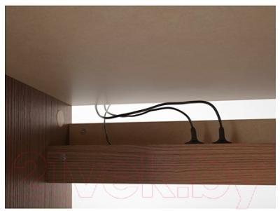 Письменный стол Ikea Мальм 203.275.06 (коричневая морилка/ясеневый шпон)